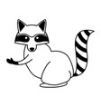 raccoon wild animal on black and white vector image