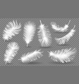 realistic fluffy feathers falling twirled plumage vector image