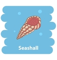 Seashell cartoon vector image vector image