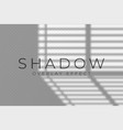 shadow overlay effect transparent soft light and vector image vector image