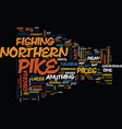 The mean and nasty northern pike text background vector image