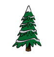 christmas tree pine decoration ornament vector image vector image