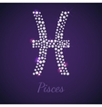 Diamond zodiac Pisces vector image