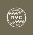 emblem baseball team new york vector image
