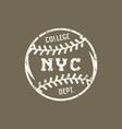 emblem of the baseball team of new york vector image