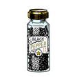 glass bottle black pepper in vintage style vector image vector image