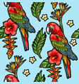 seamless pattern with ara parrot vector image vector image