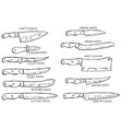 set of hand drawn kitchen knives design element vector image