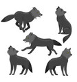 set wolves isolated on a white background vector image vector image