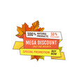 special promotion discount on thanksgiving day vector image