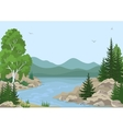 Landscape with Trees and Mountain River vector image