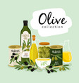 olives and olive oil natural olives oils glass vector image
