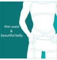 thin waist and beautiful belly vector image