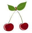 cherry colored drawing vector image vector image