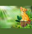 cute a lion sitting on tree stump with green leave vector image vector image