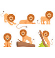 lion cartoon wild jungle animal pride happy vector image vector image