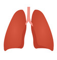 lung anatomy colorful drawing on white background vector image vector image