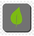 Plant Leaf Rounded Square Button vector image