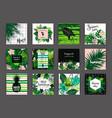 set summer tropical designs templates vector image vector image