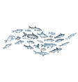 sketch - fish market card vector image vector image