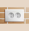 socket double grounded power switch vector image vector image