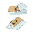 a cute cartoon pug is sleeping on a pillow funny vector image