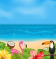 Exotic Background with Toucan Pink Flamingo vector image vector image