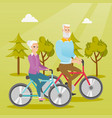 happy senior couple riding on bicycles in park vector image vector image