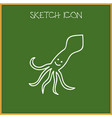 of zoo symbol on squid doodle vector image vector image