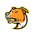 american staffordshire terrier head mascot