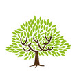 green leaf tree isolated for nature concept vector image vector image