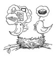 cartoon couple birds sitting on nest female vector image