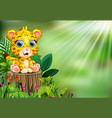 cartoon happy baby leopard standing on tree stump vector image vector image