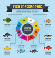 fish infographic concept flat style vector image