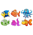 Five different kinds of sea creatures vector image vector image