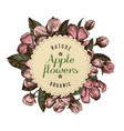 round paper emblem over hand drawn apple flowers vector image vector image
