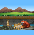 scene with animals in zoo vector image vector image
