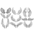 set angel wings wings collection with feathers vector image vector image