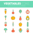 Trendy set of stylish thin line flat vegetable ico vector image vector image