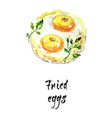 watercolor hand drawn of fried eggs vector image