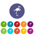 flamingo set icons vector image vector image