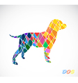 Labrador dog abstract isolated vector image