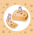 mice cheddar cheese funny cartoon caracter vector image vector image