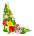 tropical corner design vector image vector image