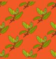 aleppo oak branch seamless pattern vector image vector image