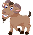 cute goat cartoon smiling look at camera vector image vector image