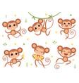 cute monkeys jungle wild animals baby little