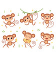 cute monkeys jungle wild animals balittle vector image vector image