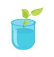 Green sprout in a glass with water icon vector image
