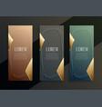 vintage luxury vertical golden banners set design vector image